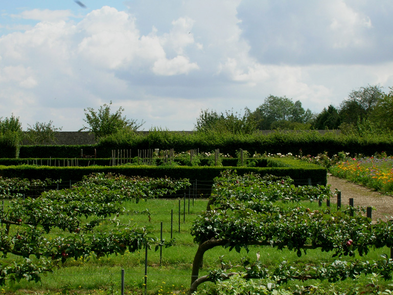 Atelier de paysages bruel delmar jardin du chateau de talcy for Atelier du jardin d acclimatation